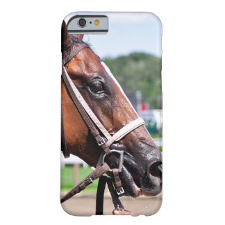 Loon River Gets a Cold Sponging Barely There iPhone 6 Case