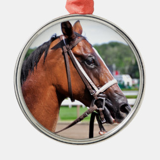 Loon River Gets a Cold Sponging Round Metal Christmas Ornament