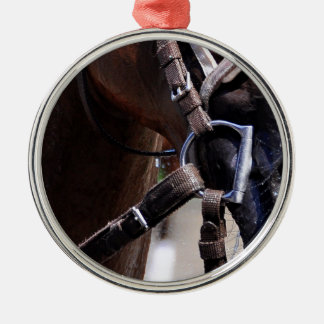 Loon River Round Metal Christmas Ornament