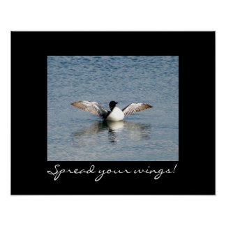 Loon--Spread your wings Poster