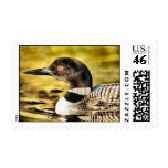 Loon Stamps