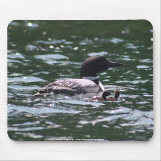Loon with babies 1 mouse pad