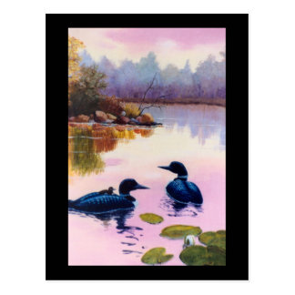 Loons At Twilight Postcard