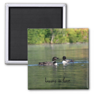 Loons in love magnet