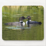 Loons Mouse Pad