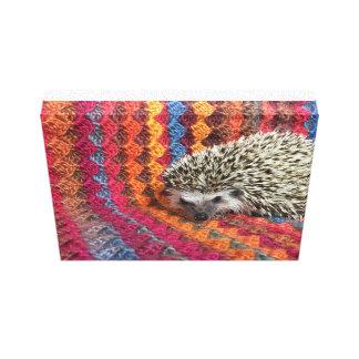 Loopsy the hedgehog canvas print