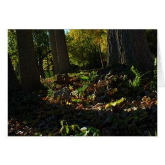 Loose Leaves Greeting Card