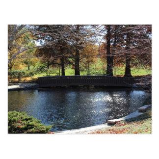 Loose Memorial Park # 12 Postcard