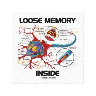 Loose Memory Inside Neuron Synapse Geek Humor Canvas Print