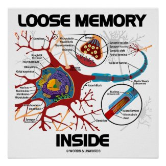 Loose Memory Inside (Neuron / Synapse) Posters