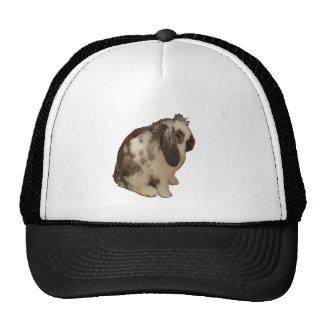 Lop Eared Baby Rabbit. Trucker Hat