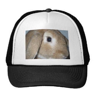 Lop Eared Bunny close-up Trucker Hat