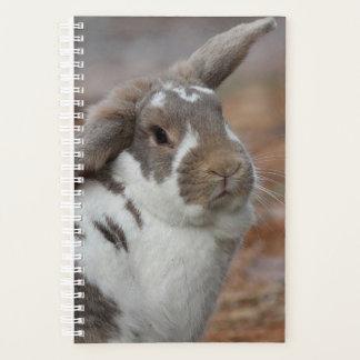 Lop-eared bunny planner