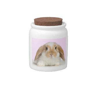 Lop-Eared Bunny Rabbit Candy Jar