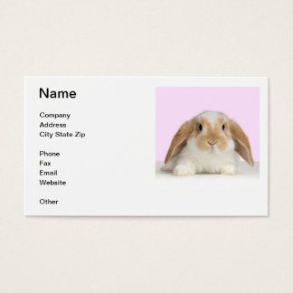 Lop Eared Rabbit Business Card
