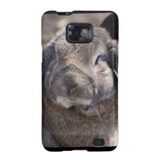 Lop Eared Rabbit Samsung Galaxy S2 Covers