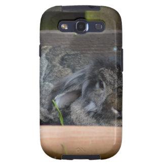Lop eared rabbit samsung galaxy s3 case