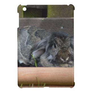 Lop eared rabbit iPad mini cases