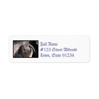 Lop Eared Rabbit Custom Return Address Labels