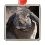 Lop Eared Rabbit Metal Ornament