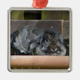 Lop eared rabbit square metal christmas ornament