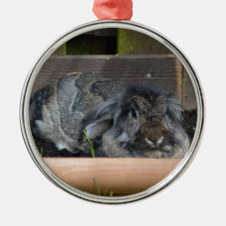 Lop eared rabbit round metal christmas ornament