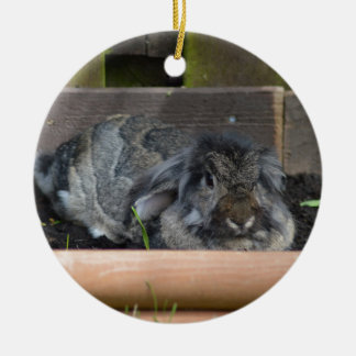 Lop eared rabbit Double-Sided ceramic round christmas ornament