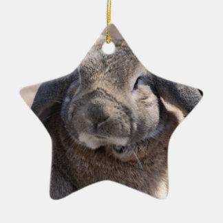 Lop Eared Rabbit Christmas Ornaments