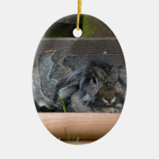 Lop eared rabbit Double-Sided oval ceramic christmas ornament