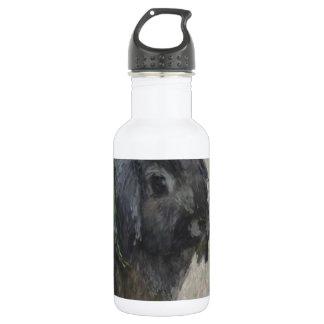 Lop eared  rabbit painting 18oz water bottle