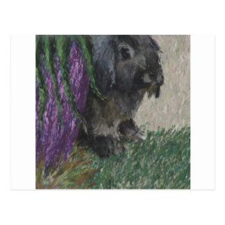 Lop eared  rabbit painting postcard