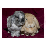 Lop Eared Rabbit Pair Greeting Card