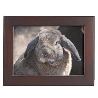 Lop Eared Rabbit Memory Box