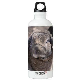 Lop Eared Rabbit SIGG Traveler 0.6L Water Bottle