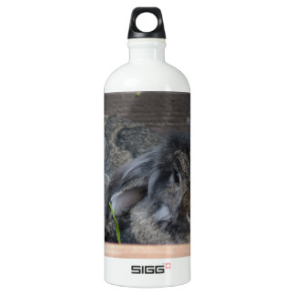 Lop eared rabbit SIGG traveler 1.0L water bottle