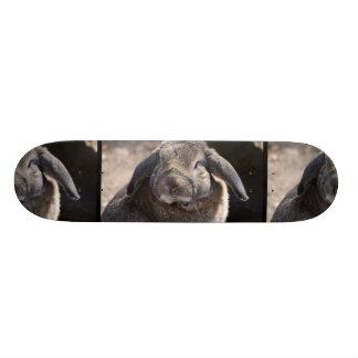 Lop Eared Rabbit Skate Decks