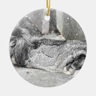 Lop  eared rabbit sleeping ceramic ornament