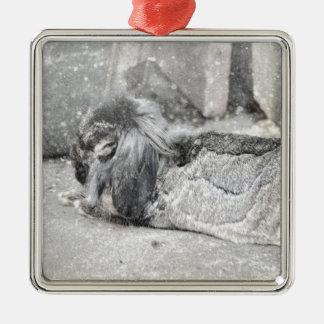 Lop  eared rabbit sleeping square metal christmas ornament