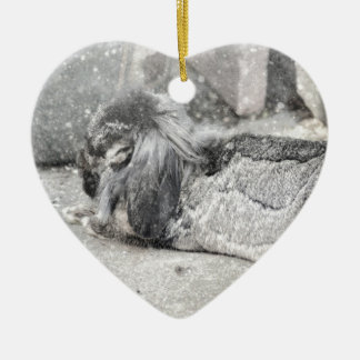 Lop  eared rabbit sleeping Double-Sided heart ceramic christmas ornament
