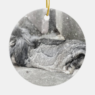 Lop  eared rabbit sleeping Double-Sided ceramic round christmas ornament