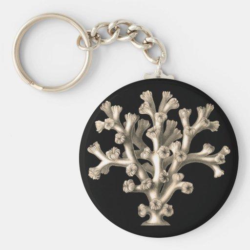 Lophohelia - Coral Key Chain