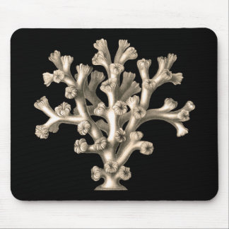 Lophohelia - Coral Mouse Pad