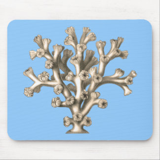 Lophohelia - Coral Mousepads