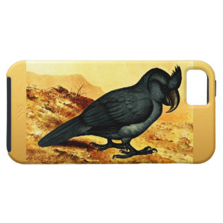 Lophopsittacus Mauritianus Vibe iPhone 5 Case