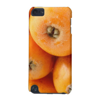 Loquats iPod Touch (5th Generation) Cover