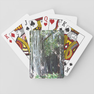 Lord Howe Island Fig Tree Playing Cards