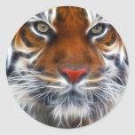 Lord of the Indian Jungles, The Royal Bengal Tiger Classic Round Sticker