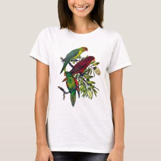Lories and lorikeets T-Shirt