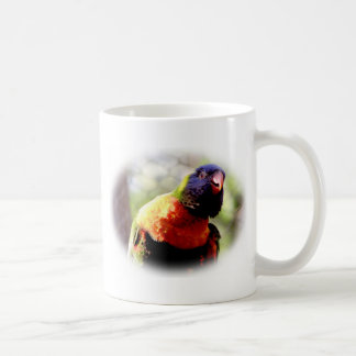 Lorikeet_0959 Mugs