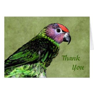 Lorikeet de Goldie le agradece Notecard Tarjeta Pequeña